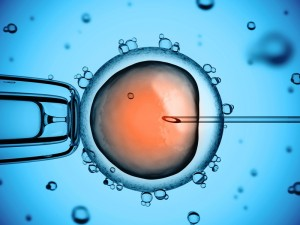"ALLEA endorses ""Statement Supporting Funding for Stem Cell and Reproductive Health Research in Europe 2014"""