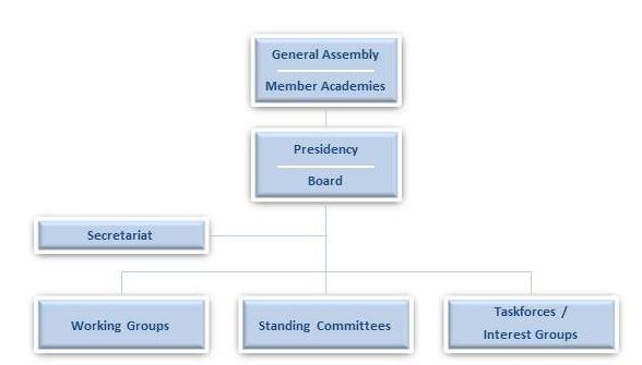 Governance_ALLEA_Organigramm