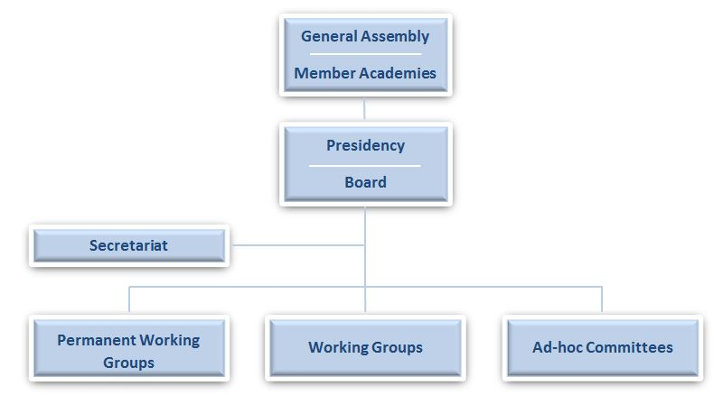 organisational structure3